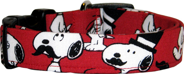 Famous Cartoon Dog in Disguise Red Collar