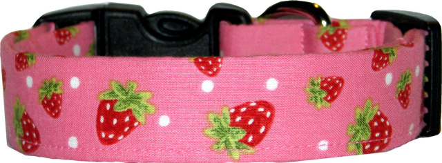 Tossed Red Strawberries on Pink Dog Collar