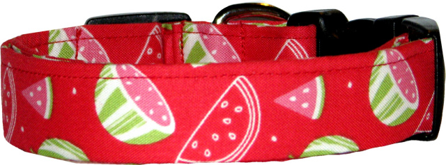 Watermelon Slices on Red Dog Collar