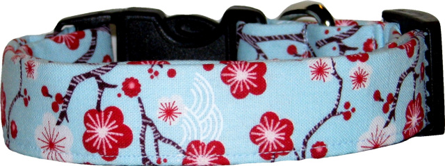 Asian Cherry Blossoms on Light Blue Dog Collar
