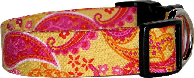 Vibrant Yellow & Pink Paisley Dog Collar